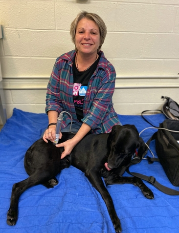 Petra's Dog Resource Center - Canine Rehab Cold Laser